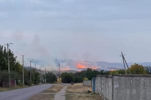 Мэр Краматорска сообщил о масштабном лесном пожаре