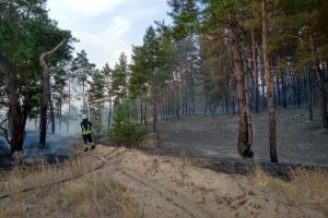 На Луганщине ликвидировали лесной пожар