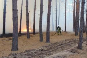 Обстрел оккупантов спровоцировал пожар на Луганщине - РГА