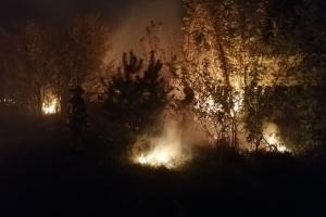 На Луганщине зафиксировали 85 пожаров, из них ликвидировали половину