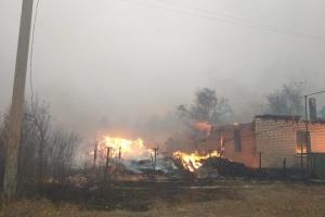 В лесных пожарах на Луганщине погибли четыре человека, десятеро госпитализированы
