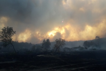 Losses from fires in Kharkiv region preliminary estimated at UAH 640M