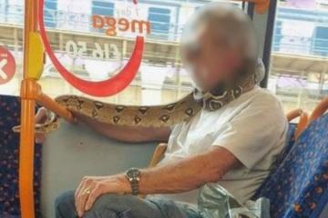 """Британець використав змію як """"маску"""" в транспорті"""