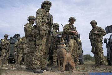 Минобороны планирует пригласить на «Rapid Trident-2021» 6 тысяч военных из 15 стран