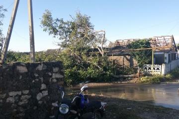 Abgedeckte Dächer, umgestürzte Bäume nach Unwetter in Region Cherson