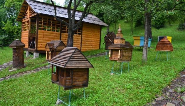 У Колочаві з'явилося бджолине «село»