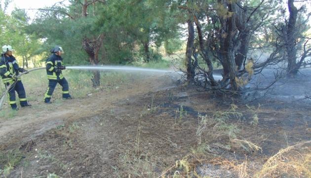 Лісову пожежу біля Сєвєродонецька локалізували — ДСНС