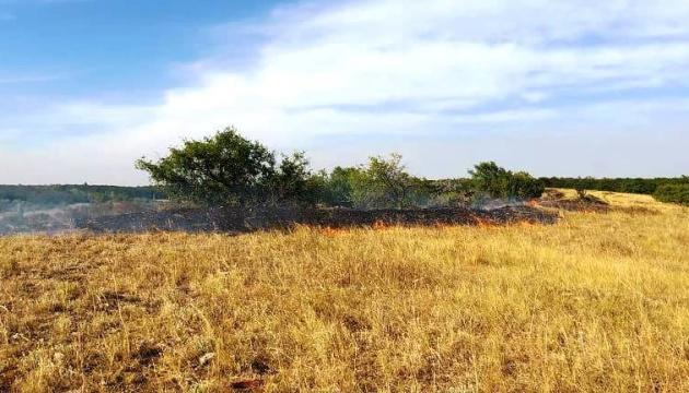 У Попаснянському районі пожежі спалахнули одразу в кількох місцях