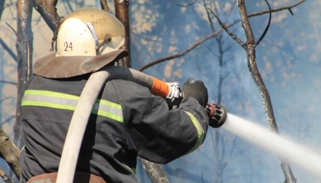 На Харківщині загасили одну з лісових пожеж