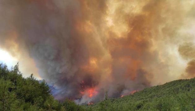 На сході Туреччини вирує масштабна лісова пожежа