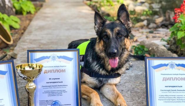 Поліцейська вівчарка з Миколаєва перемогла у змаганнях зі спецпідготовки