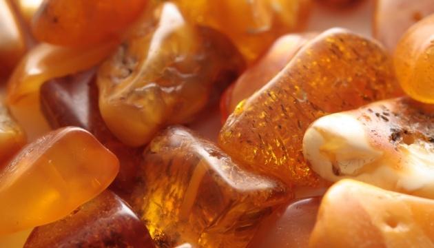 Продали три дозволи на легальний видобуток бурштину у Рівненській області