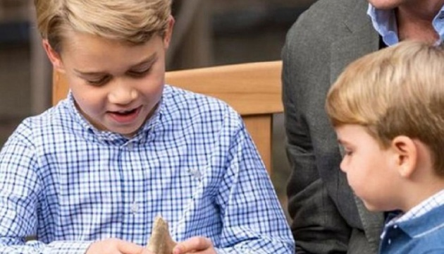 Мальта требует от Британии вернуть ей зуб мегалодона, подаренный 7-летнему принцу