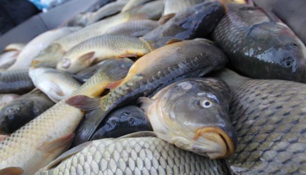Ukraine increases fish and crustacean exports