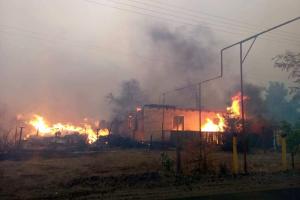 Waldbrände in Region Luhansk: Vier Person gestorben, zehn weitere verletzt