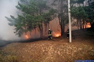 Через пожежі на Луганщині відкрили сім кримінальних справ