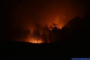 На Луганщині через пожежі загинули п'ятеро людей