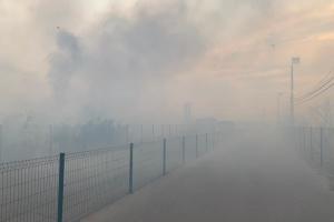 Огонь повредил инфраструктуру КПВВ «Станица Луганская»