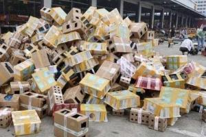 Коты и собаки по почте: в Китае обнаружили 5000 животных, умерших без еды и воды