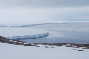 В Антарктиді знайшли мумії пінгвінів, яким може бути до 5 тисяч років