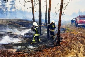 Bomberos continúan combatiendo el fuego en la región de Lugansk