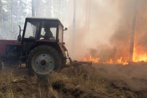 Рада утворила ТСК щодо пожеж на Луганщині