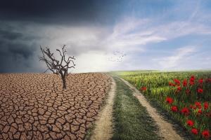 Евросоюз планирует ежегодно инвестировать $100 миллиардов в климатические проекты