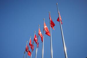 МИД Турции раскритиковал резолюцию ЕП и его позицию по Кипру