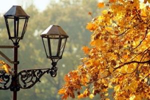 Україну чекають кілька туманних теплих днів