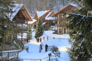 В Украине планируют создать «Карпатский круг курортов»