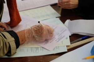 В Житомирский облсовет проходят 9 партий - параллельный подсчет