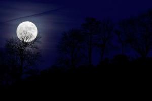 В ночь на воскресенье в небе можно будет увидеть голубую Луну
