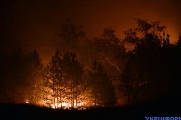 Podczas pożarów lasów w obwodzie ługańskim cztery osoby zginęły, a 10 było hospitalizowanych
