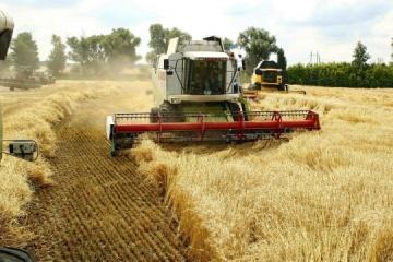 Almost 40M tonnes of grain gathered in Ukraine