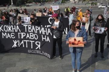 Des militants pour les droits des animaux organisent une manifestation à Kyiv