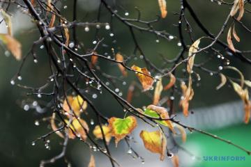 Украине прогнозируют до + 2°, дождь и мокрый снег