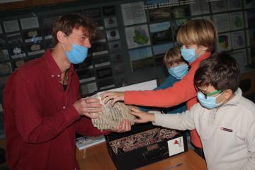 У Вінниці краєзнавчому музею передали зуб мамонта