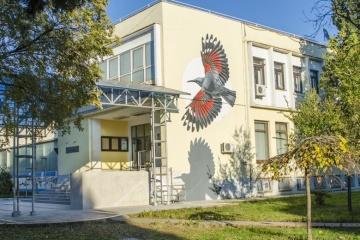 Дні молодих українських талантів стартують у Чорногорії