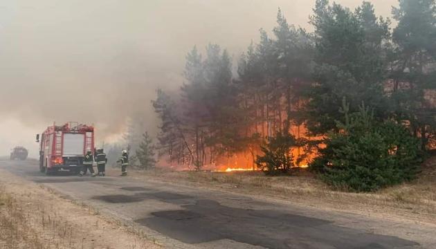 На Банковій відреагували на інформацію про обстріли окупантів, що могли спричинити лісові пожежі