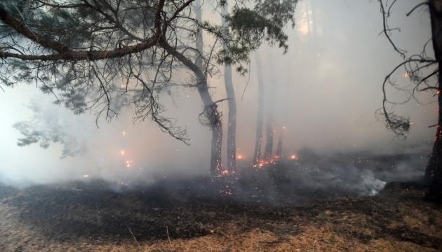 Авіацію долучили до гасіння пожеж на Луганщині після отримання листів про «тишу»