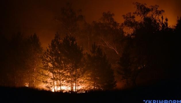 Premierminister Schmyhal fliegt in Region Luhansk, um Ausmaß der Brände einzuschätzen