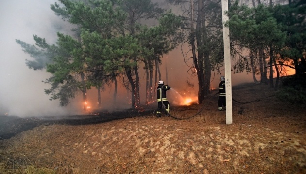 Cinco personas muertas, diez hospitalizadas en incendios forestales en la región de Lugansk