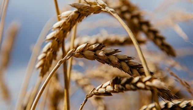 Спекотний південь: без зрошення не буде хліба