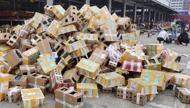Коти і собаки поштою: у Китаї виявили 5000 тварин, які померли без їжі і води