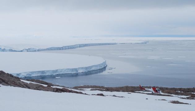 В Антарктиде нашли мумии пингвинов, которым может быть до 5000 лет