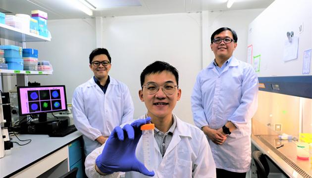 У Сінгапурі розробили метод боротьби з раком за допомогою наночасток