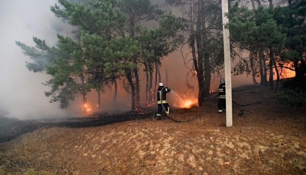 Pożary w obwodzie ługańskim - siedem z dziewięciu ognisk zostało zlikwidowanych, jedna zlokalizowana