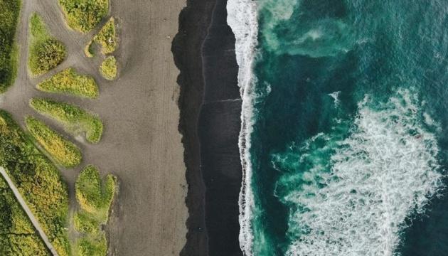 На Камчатці - екологічна катастрофа, загинули сотні морських істот