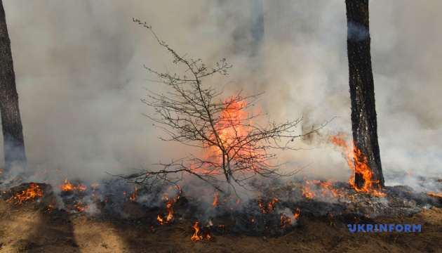 Пожары в Луганской области: в парламенте требуют уволить начальника областной ГСЧС