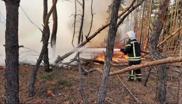 На Луганщині ліквідували 7 з 10 осередків пожеж - ДСНС